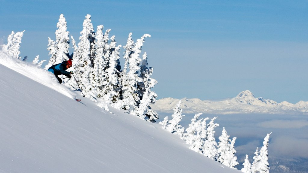 Sun Peaks which includes snow and snow skiing
