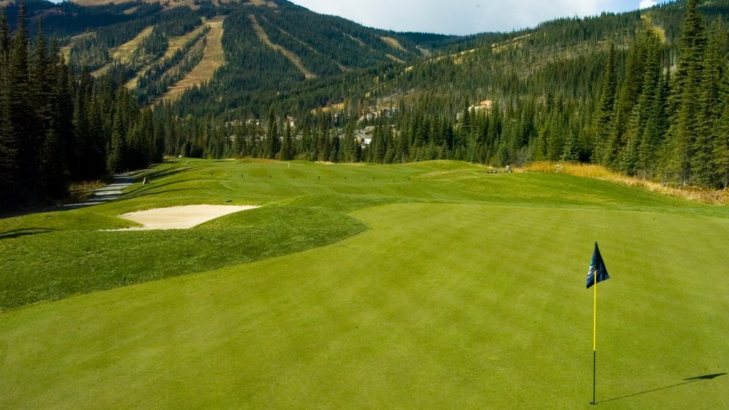 Sun Peaks featuring golf