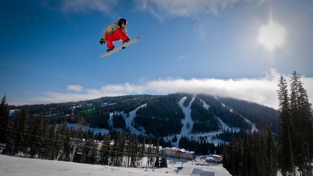Sun Peaks featuring snow boarding and snow