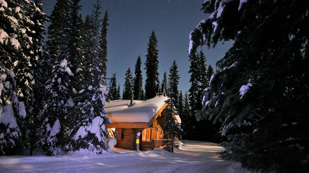 Sun Peaks showing night scenes and snow