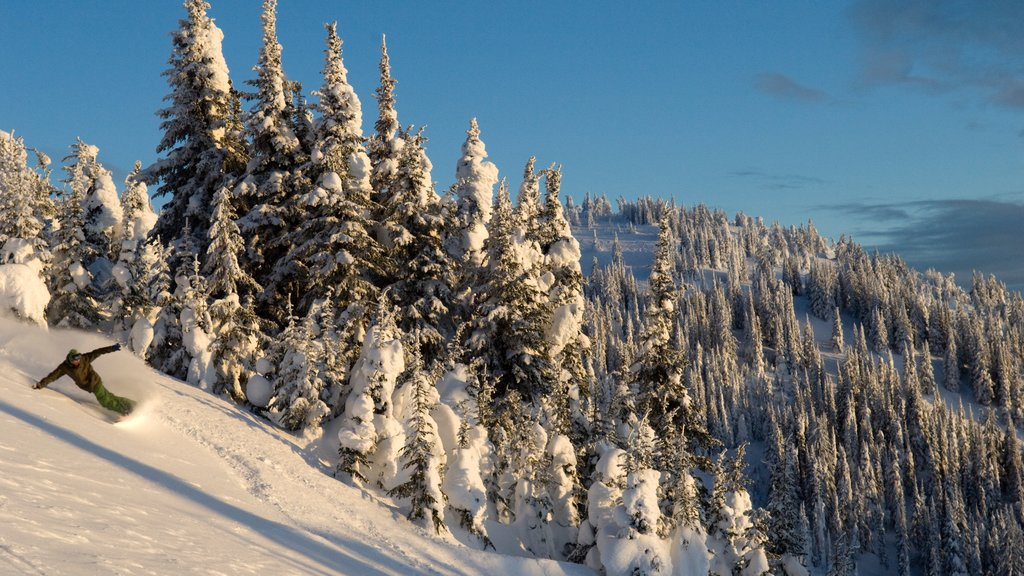 Sun Peaks showing snow skiing, mountains and snow