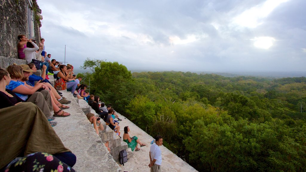 Tikal showing forests and tranquil scenes as well as a large group of people