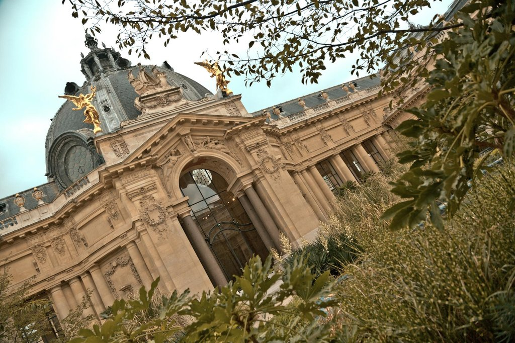 le Jardin du Petit Palais - 75008 Paris.jpg