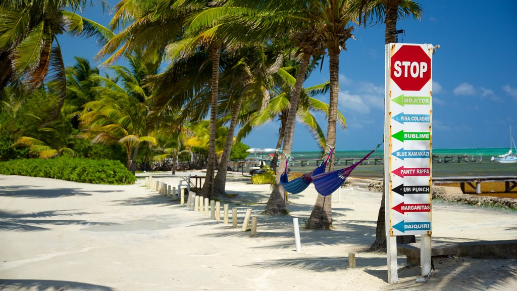 San Pedro which includes signage, general coastal views and tropical scenes