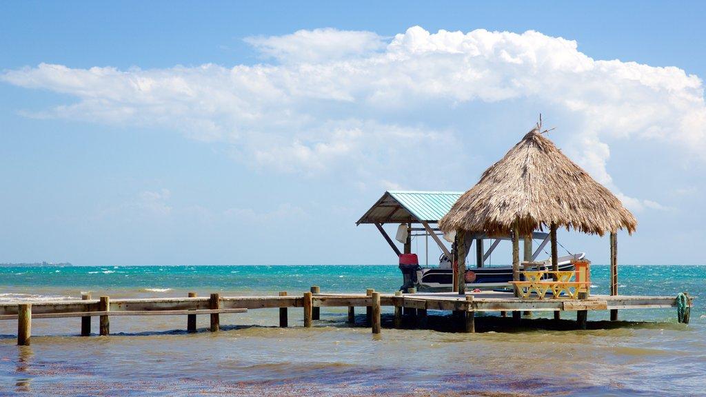 Maya Beach showing tropical scenes and general coastal views