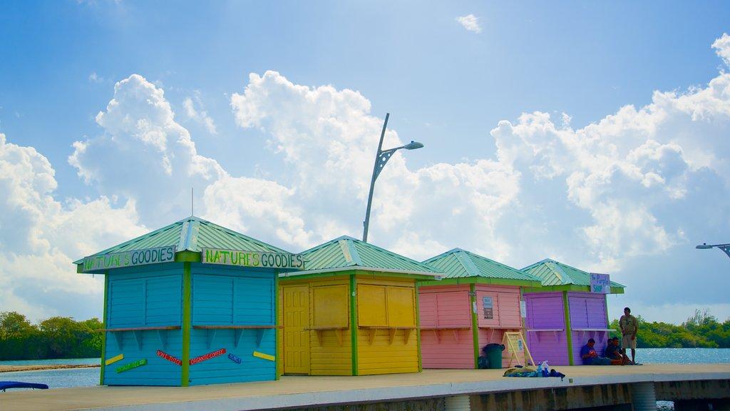 Placencia Beach showing general coastal views
