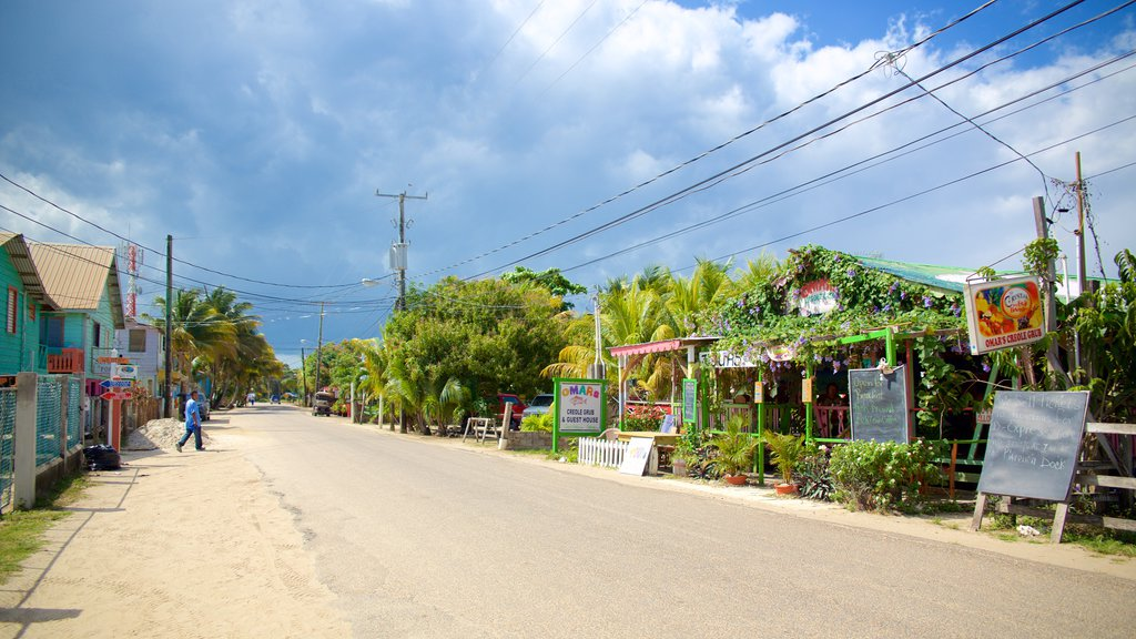 Placencia Beach showing a small town or village