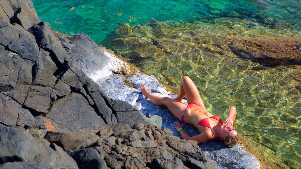 Conchi Natural Pool