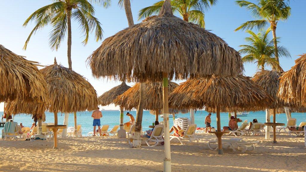 Aruba showing tropical scenes and a sandy beach