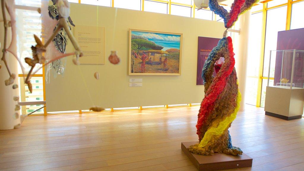 Museo Arqueológico Nacional de Aruba que incluye arte