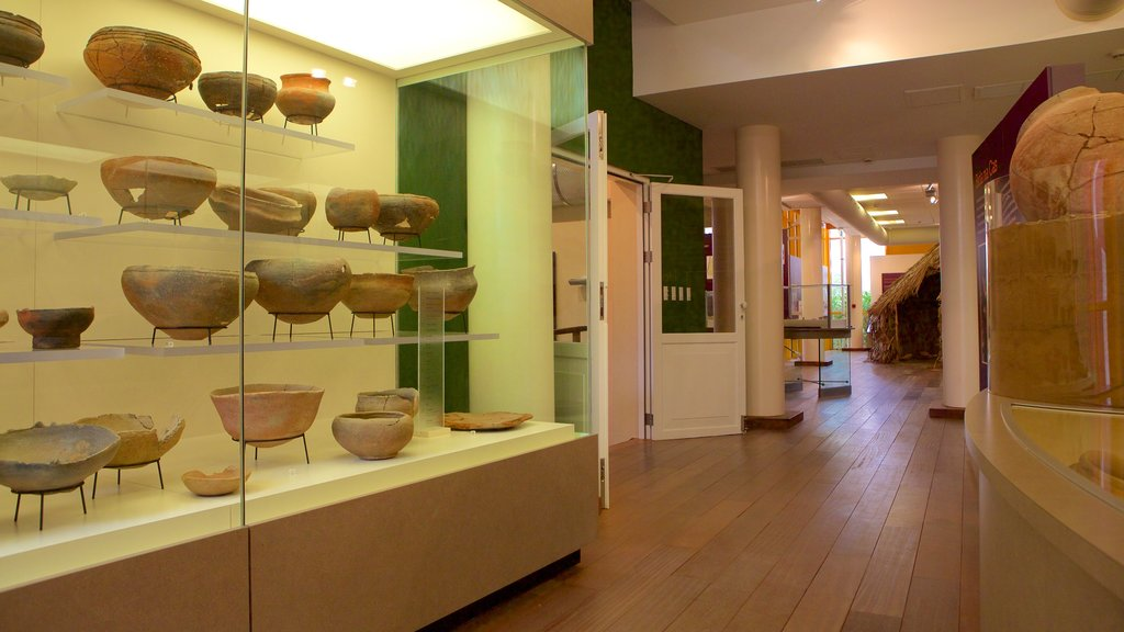 Museo Arqueológico Nacional de Aruba mostrando vistas interiores