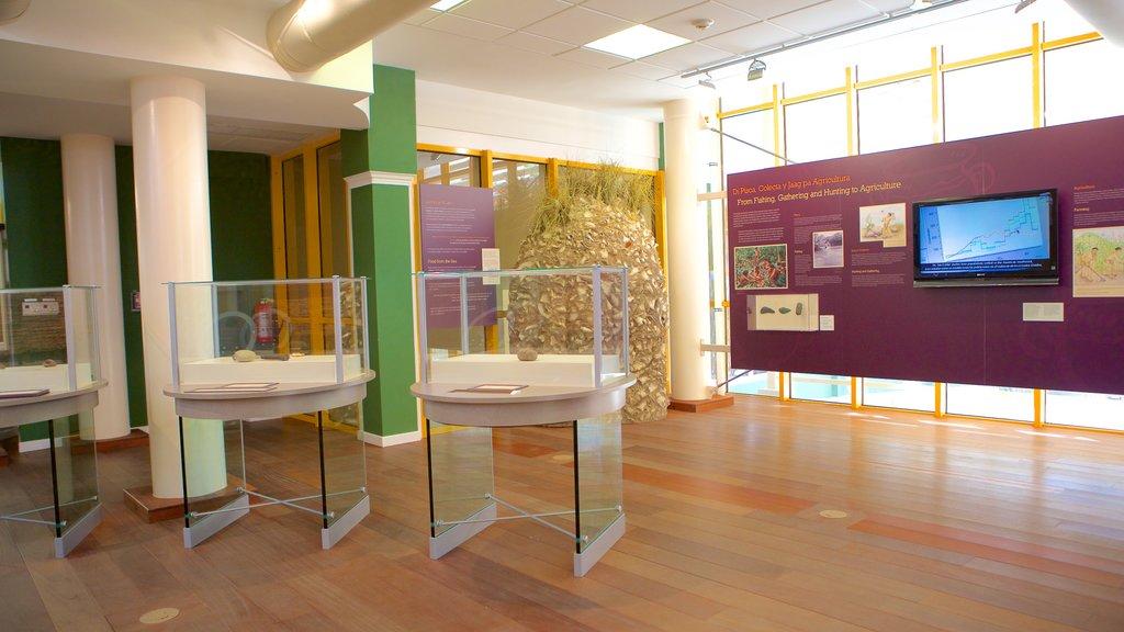 Museo Arqueológico Nacional de Aruba que incluye vistas interiores