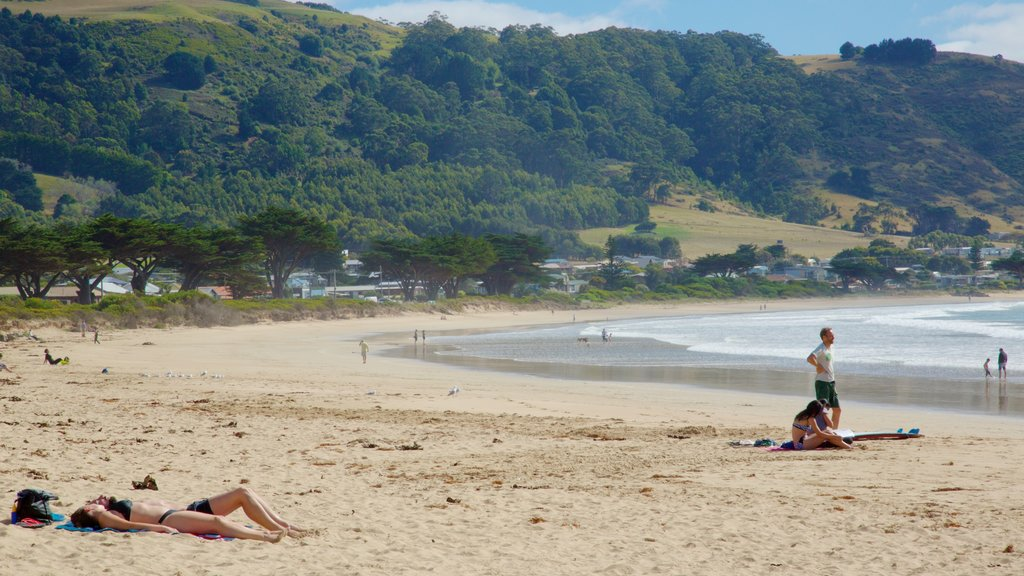 Apollo Bay which includes a beach as well as a small group of people