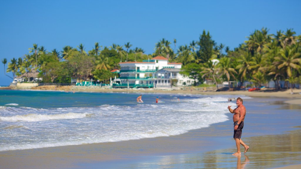 Puerto Plata showing a sandy beach as well as an individual male