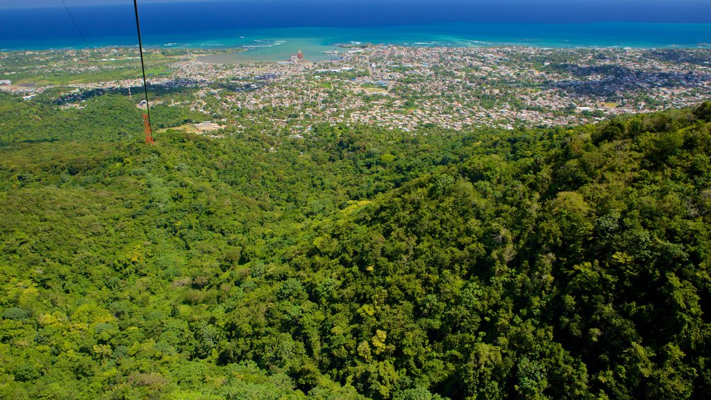 Puerto Plata Cable Car which includes general coastal views, forests and a city