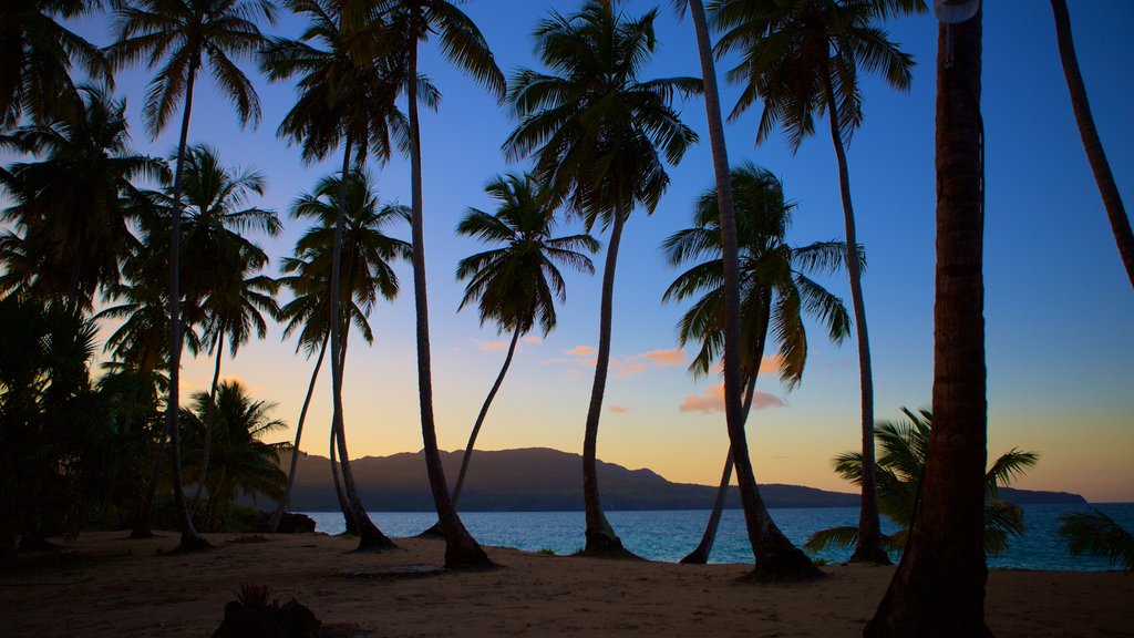 Samana which includes a sunset, tropical scenes and a beach