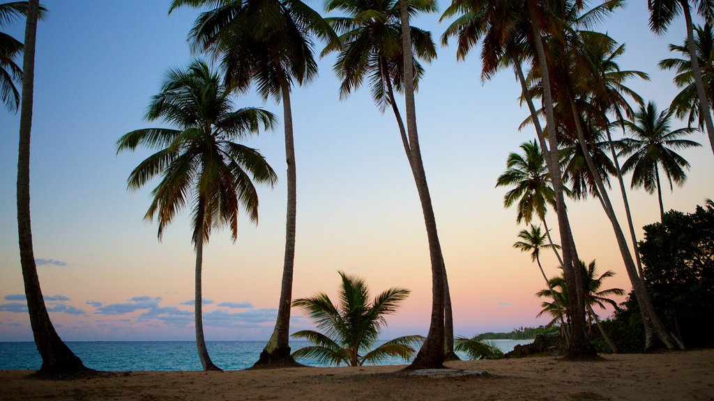 Samana showing tropical scenes, a sandy beach and a sunset