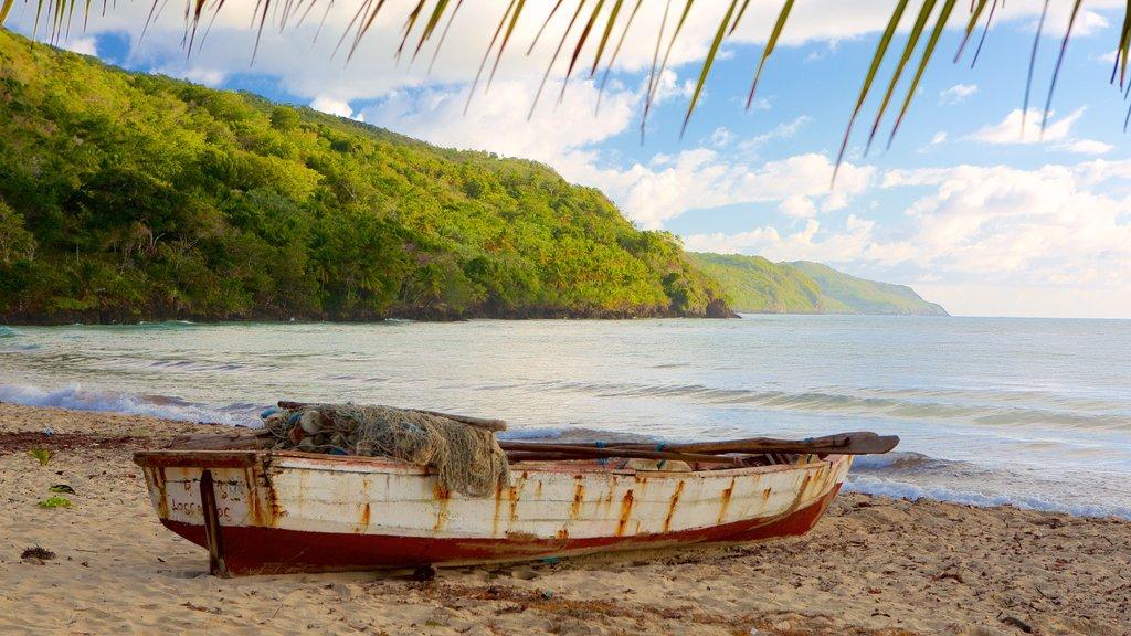 Rincon Beach which includes a beach