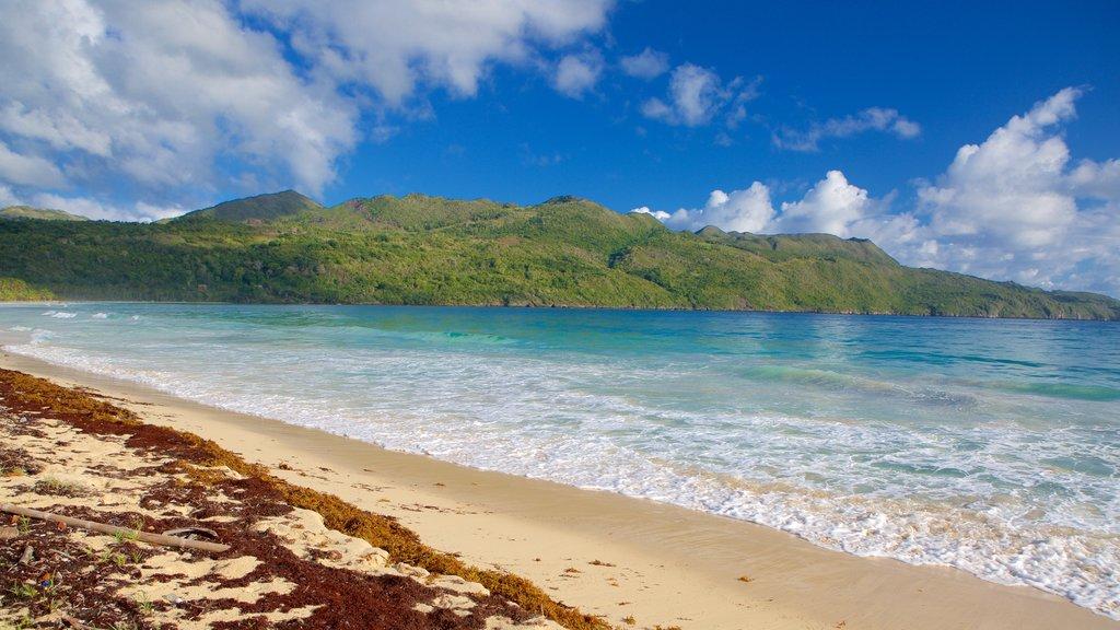 Rincon Beach showing a sandy beach