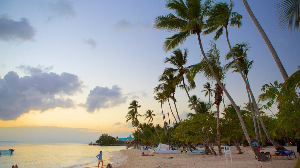Bayahibe Beach featuring a beach, a sunset and tropical scenes