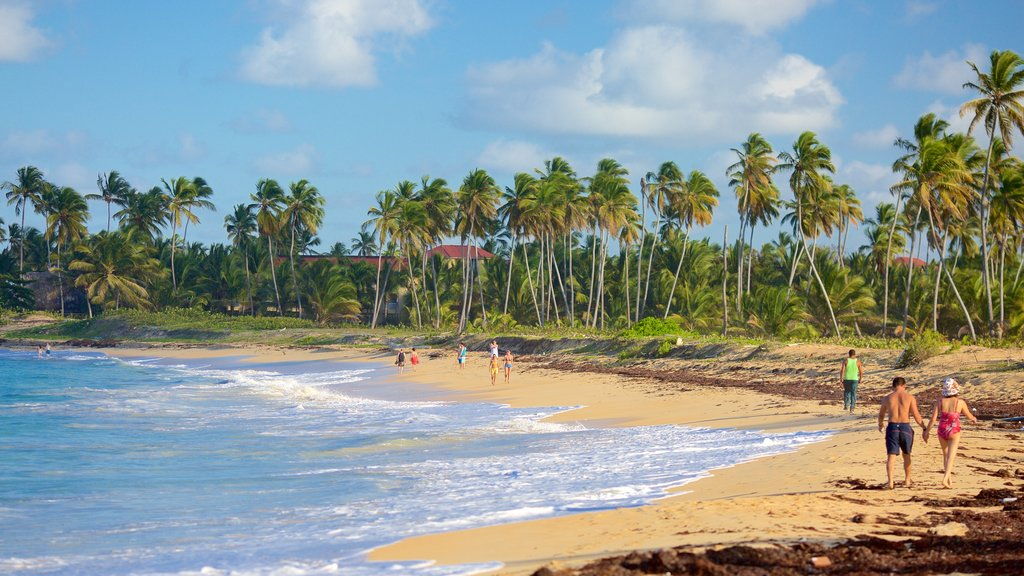 Uvero Alto showing a sandy beach as well as a couple