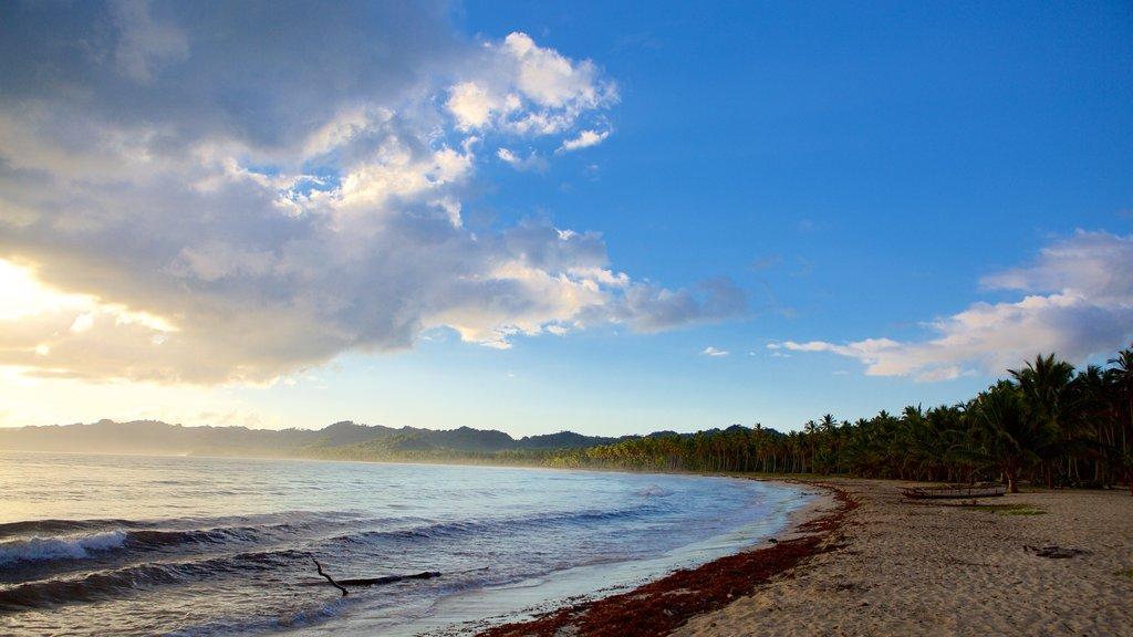 Rincon Beach featuring a beach