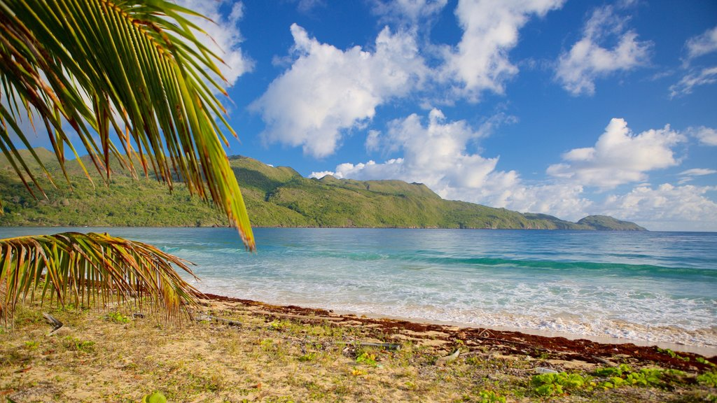 Rincon Beach featuring general coastal views
