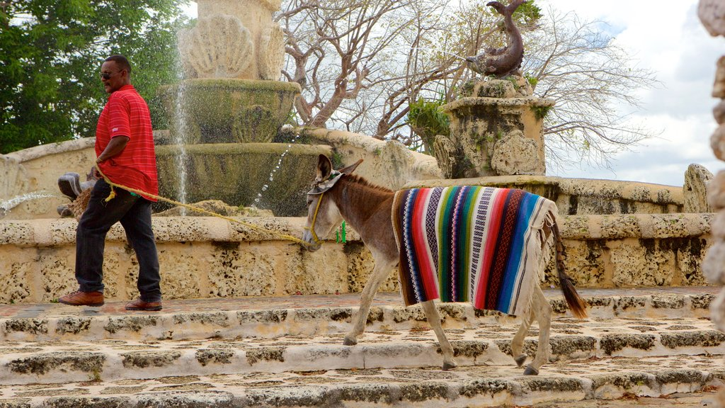 Altos de Chavon Village which includes animals and heritage elements as well as an individual male