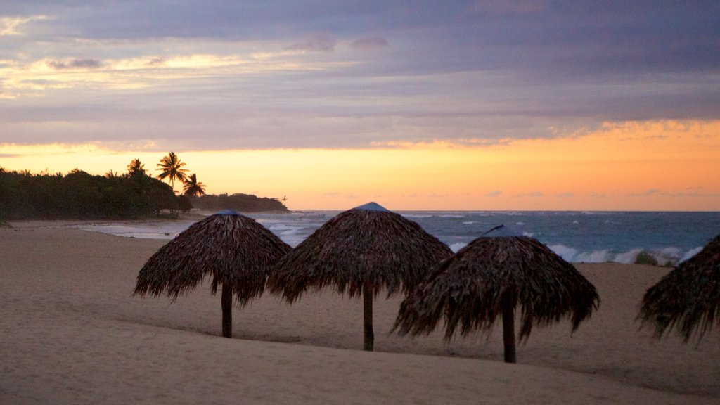 Playa Dorada which includes a sunset, tropical scenes and a sandy beach