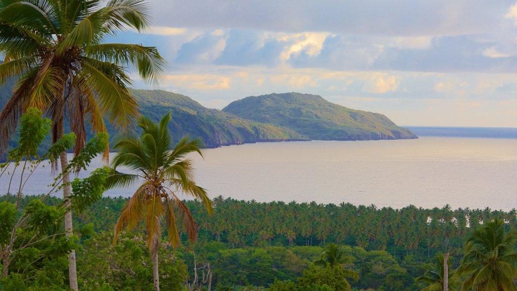 Rincon Beach which includes landscape views and general coastal views