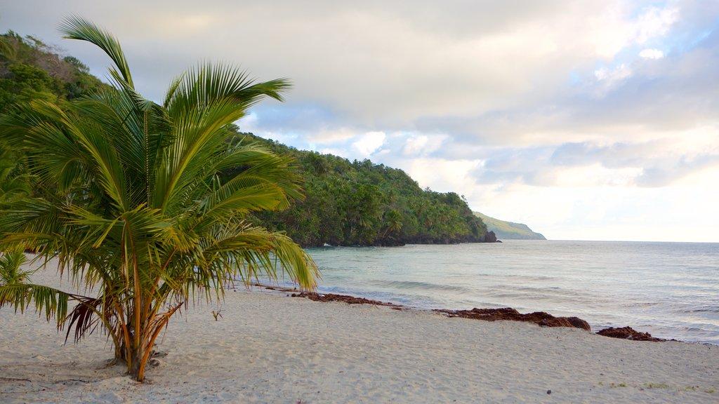 Las Galeras showing a beach and tropical scenes