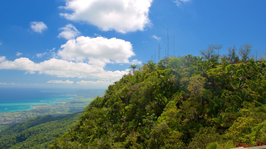 Pico Isabel de Torres featuring landscape views and general coastal views
