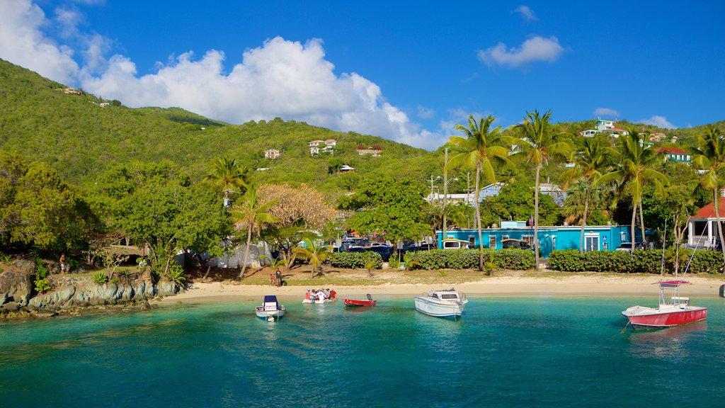 Cruz Bay which includes a coastal town and a sandy beach