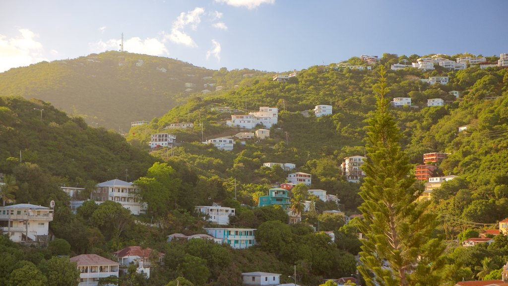 Charlotte Amalie showing tranquil scenes and a small town or village