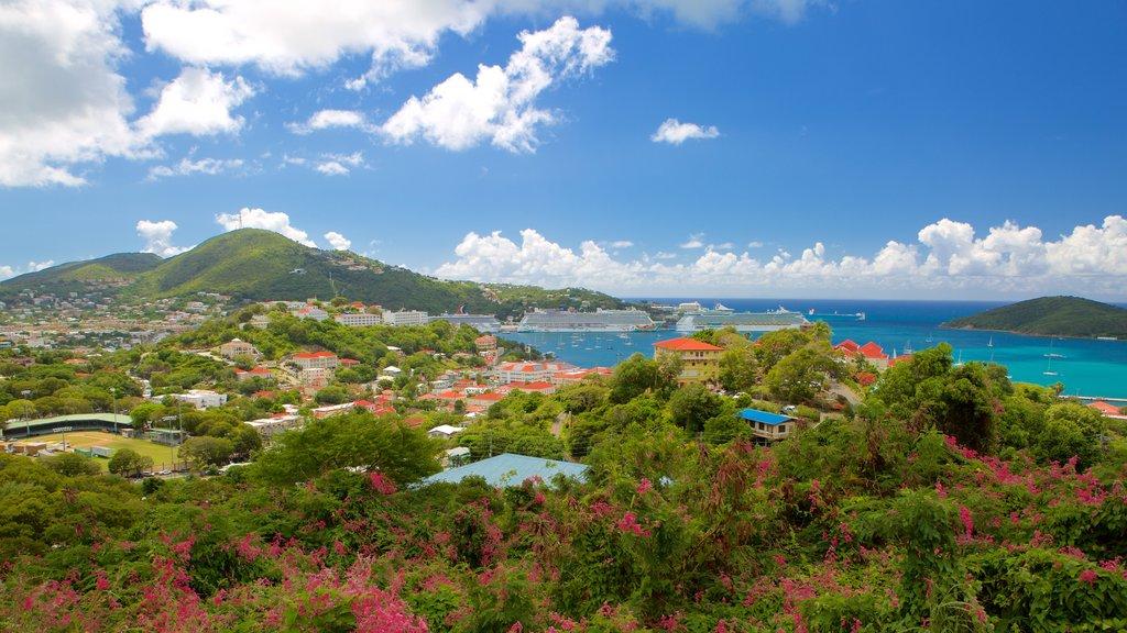 Charlotte Amalie showing general coastal views, a coastal town and a bay or harbor