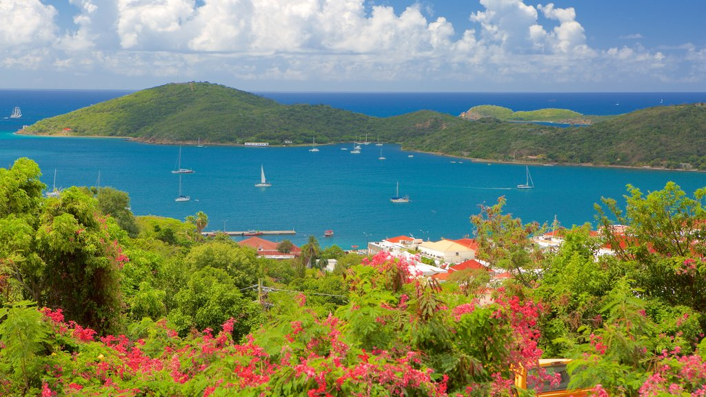 Charlotte Amalie featuring a bay or harbor and a coastal town