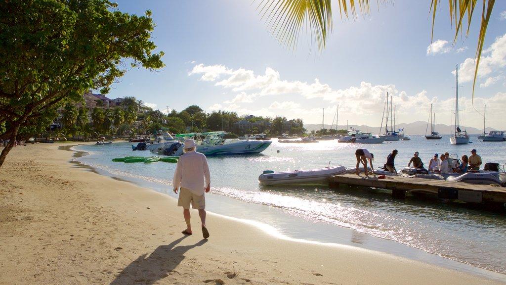 Cruz Bay featuring a bay or harbor and a sandy beach