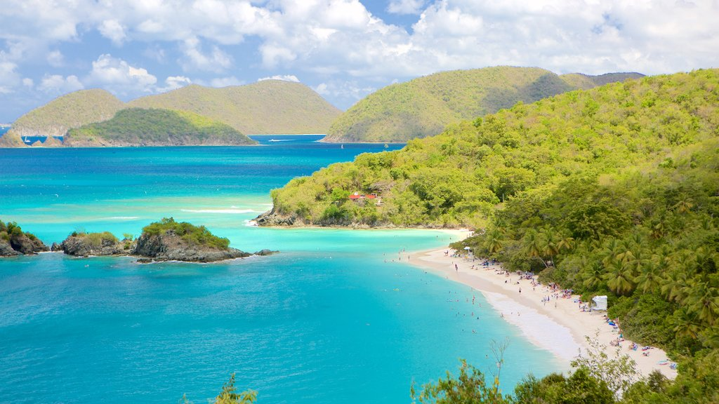 Virgin Islands National Park featuring a bay or harbor and a beach