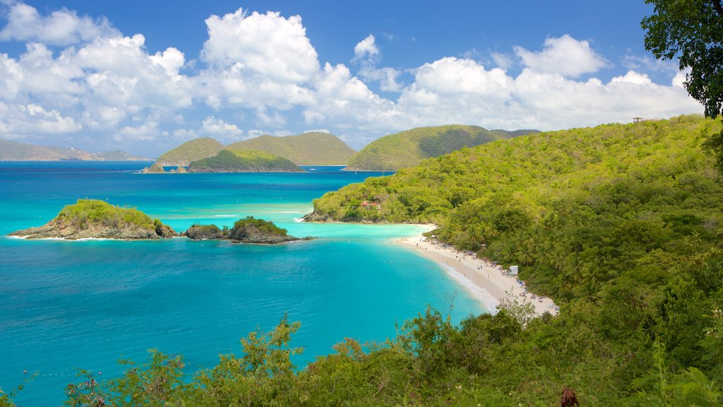 Trunk Bay featuring a bay or harbor and a beach