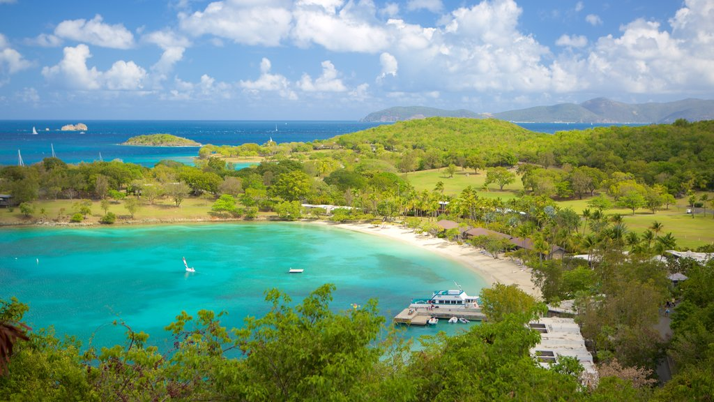 Caneel Bay featuring a bay or harbor