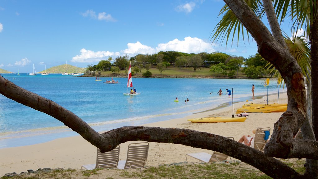 Caneel Bay showing a beach