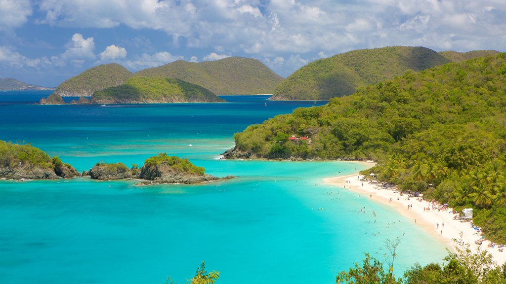 Trunk Bay which includes island images