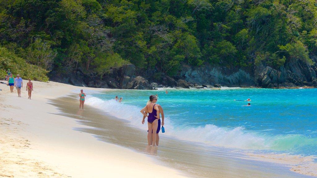 Trunk Bay featuring a beach