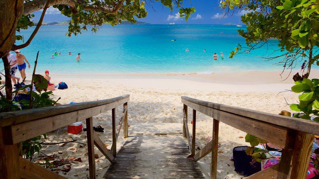 Trunk Bay featuring a sandy beach