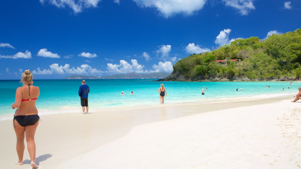 Trunk Bay which includes a sandy beach