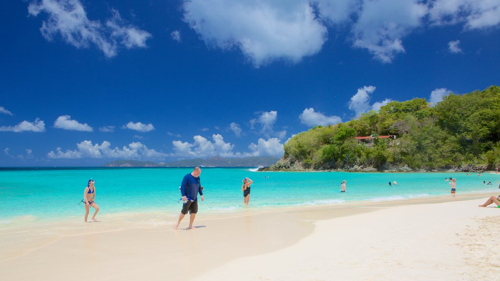 Trunk Bay which includes a sandy beach and tropical scenes