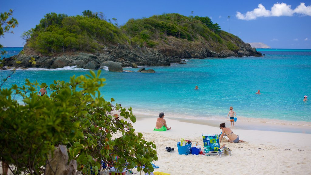 Trunk Bay which includes a bay or harbor, a beach and tropical scenes