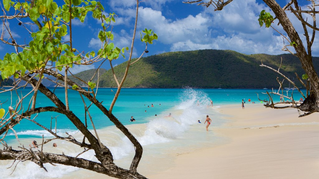 Cinnamon Bay which includes tropical scenes and a sandy beach