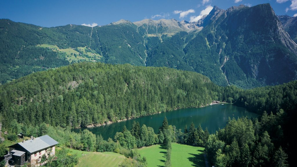 Austria featuring landscape views, forest scenes and a lake or waterhole