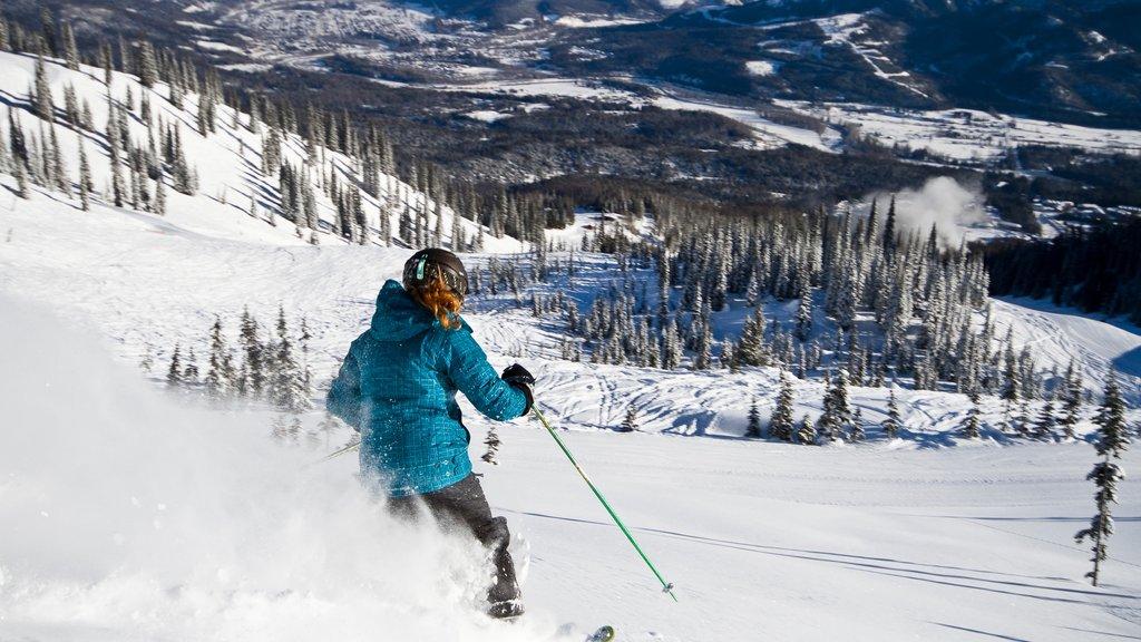 Fernie Alpine Resort showing snow and snow skiing